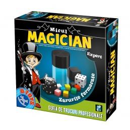Micul magician - Zarurile fermecate