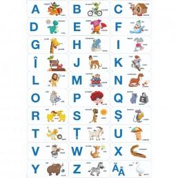 Puzzle Noriel - Litere si cuvinte